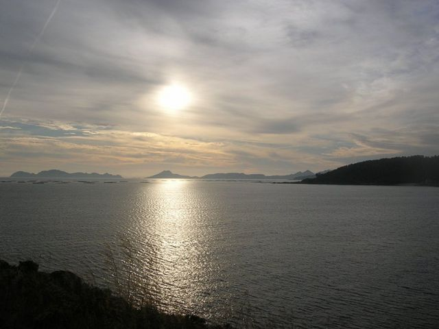 Cies_isole